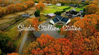 Autumn of Shadai Stallion Station【動画】