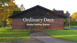 Ordinary Days video of the Shadai Stallion Station