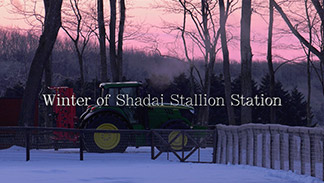 Winter of Shadai Stallion Station【動画】