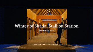 Winter of Shadai Stallion Station Second edition